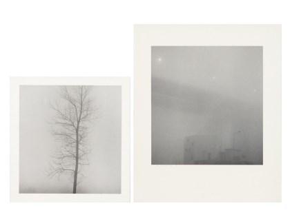 Deep Fog Series (2점)