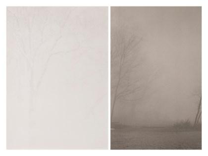 a. Snow Land b. Deep Fog