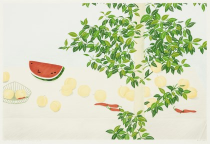 A Moment of Rest - Summer Fruite