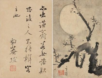 Plum blossom at Night