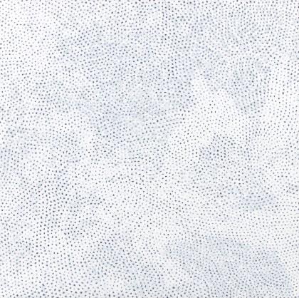 Infinity Nets (AWOMP)